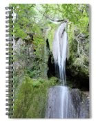 Forest With Waterfall Spiral Notebook