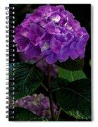 Forever Violet Spiral Notebook