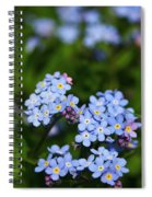 Forget Me Not 1 Spiral Notebook