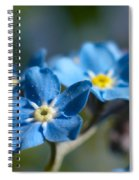 Forget -me-not 3 Spiral Notebook