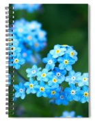 Forget -me-not 4 Spiral Notebook