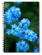 Forget -me-not 5 Spiral Notebook