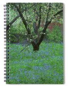 Forget Me Not Flowers Spiral Notebook