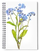 Forget-me-not Flowers On White Spiral Notebook