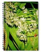 Forest's Gift. Bear's Garlic. Spiral Notebook