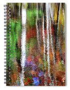 Forsaken Spiral Notebook