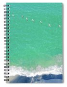 Forteen Pelicans Spiral Notebook