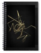 Fossil Record - Gold Pterodactyl Fossil On Black Canvas #1 Spiral Notebook