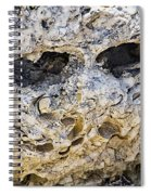 Fossil Rock Abstract - Eyes Spiral Notebook