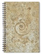 Fossils In The Cave Spiral Notebook