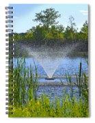 Fountain Art Spiral Notebook