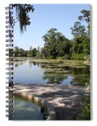 Fountain At The Swamp Spiral Notebook