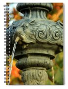 Fountain At Union Park Spiral Notebook