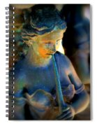 Fountain Girl Spiral Notebook