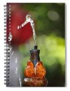 Fountain Tip Spiral Notebook