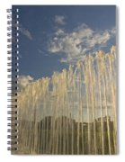 Fountain With Sunlight From The Side Spiral Notebook