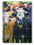 Four At The Fence Spiral Notebook
