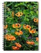 Four Butterflies On Turks Cap Lilies Spiral Notebook