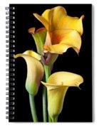 Four Calla Lilies Spiral Notebook