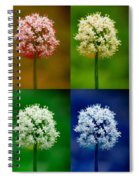 Four Colorful Onion Flower Power Spiral Notebook