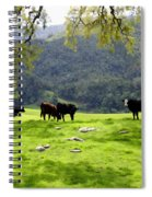 Four Cows At Nojoqui Ranch Spiral Notebook