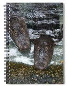 Four For Lunch Spiral Notebook