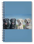 Four Labs Spiral Notebook