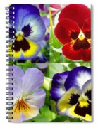 Four Pansies Spiral Notebook