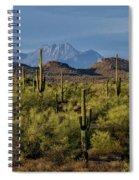 Four Peaks On The Horizon  Spiral Notebook