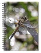 Four-spotted Skimmer Spiral Notebook