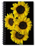 Four Sunny Sunflowers Spiral Notebook