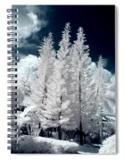 Four Tropical Pines Infrared Spiral Notebook