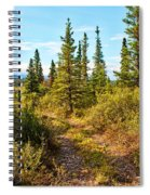 Four Wheeler Trail - Richardson Highway Spiral Notebook