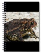Fowler's Toad #2 Spiral Notebook