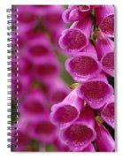 Fox Gloves Spiral Notebook