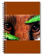 Fox In Hiding Spiral Notebook