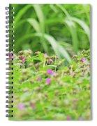 Fox In The Garden Spiral Notebook