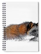 Fox On A Mission Spiral Notebook
