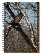 Fox River Eagles - 20 Spiral Notebook