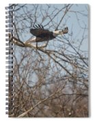 Fox River Eagles - 22 Spiral Notebook