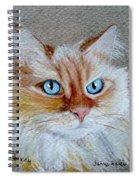 Foxey Spiral Notebook