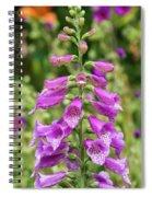 Foxglove After Rain Spiral Notebook
