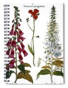 Foxglove And Hawkweed Spiral Notebook
