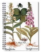 Foxglove And Herb Paris Spiral Notebook