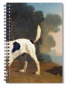 Foxhound On The Scent Spiral Notebook