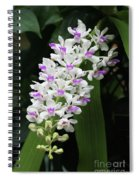 Foxtail Orchid Spiral Notebook