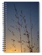 Foxtail Sunset Spiral Notebook