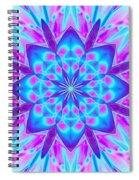 Fractal 13 Spiral Notebook