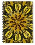 Fractal 14 Spiral Notebook
