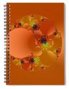 Fractal 99 Spiral Notebook